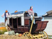 WTP-Pumpkin-Walk-2013-1
