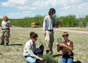 2012-GU-Tree-Planting16