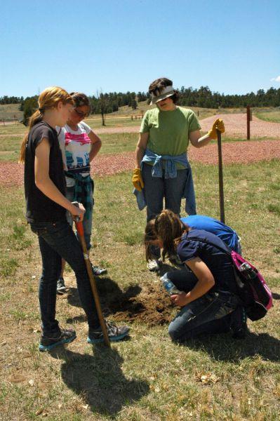 2012-GU-Tree-Planting12