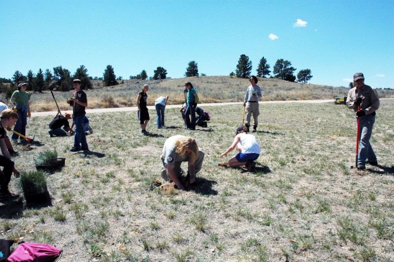 2012-GU-Tree-Planting15