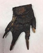 alligator-claw-coin-purse